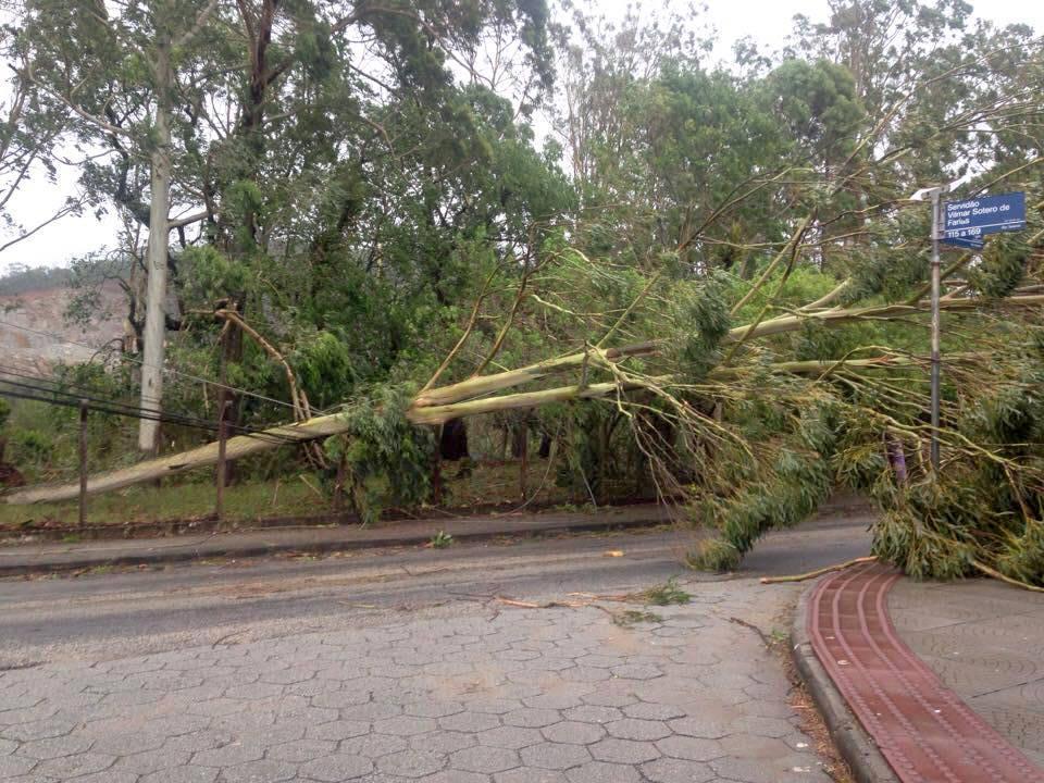 Sul da Ilha de Florianópolis é atingido por Ciclone