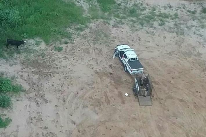 Polícia chega a tempo de impedir farra do boi perto da lagoa pequena